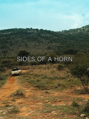 Sides of a Horn