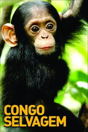 Congo Selvagem