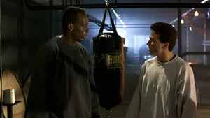 Showdown (1993)
