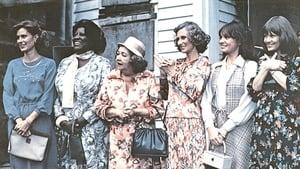 The North Avenue Irregulars (1979)