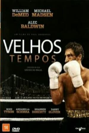 Velhos Tempos Torrent, Download, movie, filme, poster