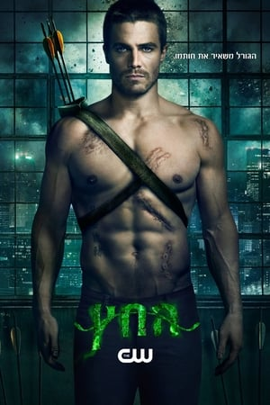 poster Arrow - Season 2