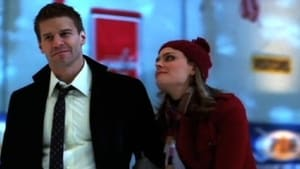 Bones - Fire in the Ice episodio 13 online