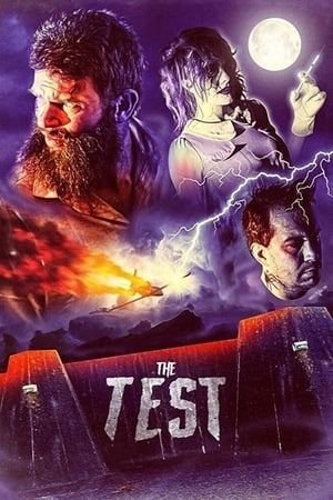 The Test (2020)