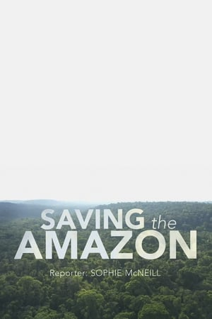 Image Four Corners: Saving the Amazon