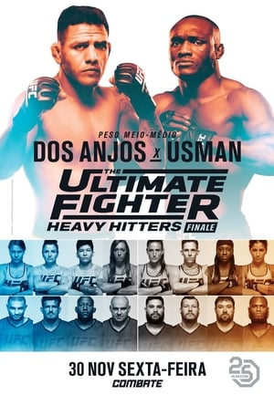 The Ultimate Fighter 28: Heavy Hitters Finale (2018)