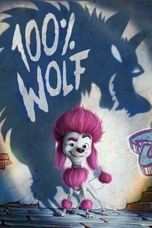 Image 100% Wolf