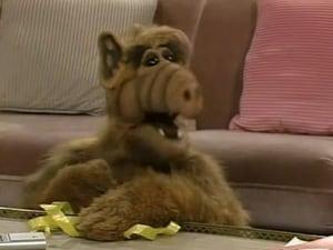 Alf: 1×2