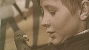 Russian movie from 1961: The Boy and the Pigeon