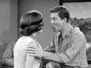 The Dick Van Dyke Show: 3×23