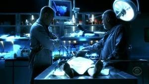 CSI: Las Vegas - Temporada 7