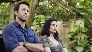 Hawaii 5-0 saison 10 episode 3