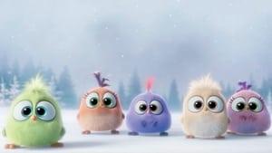 Angry Birds – O Filme