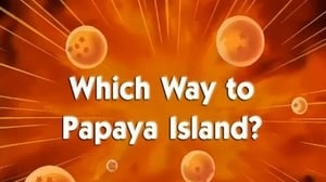 Now you watch episode Which Way to Papaya Island? - Dragon Ball