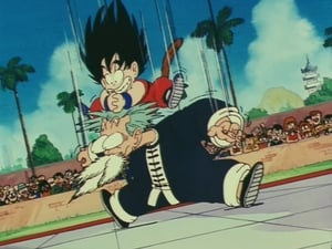 Dragon Ball: 1×26