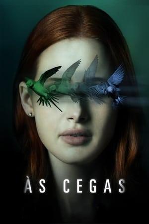 Às Cegas - Poster