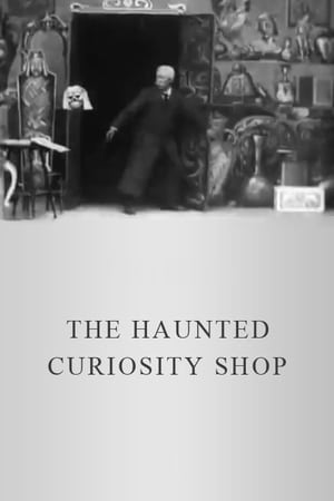 The Haunted Curiosity Shop