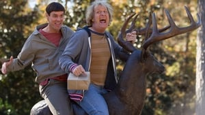 Watch Dumb and Dumber To Online Free