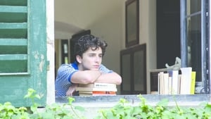 Call Me by Your Name (english)