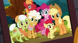 My Little Pony: Friendship Is Magic: 4×9