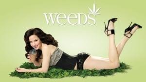 Weeds-Azwaad Movie Database