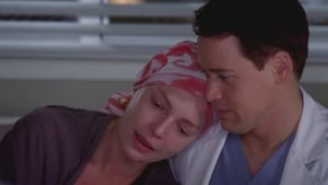 Grey's Anatomy Season 5 :Episode 23  Here's to the Future Days
