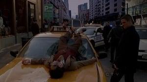 CSI: NY 9×13