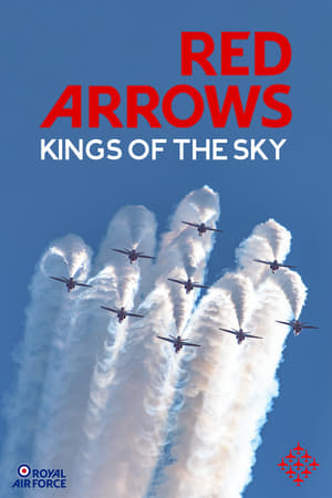 Play Red Arrows: Kings of the Sky
