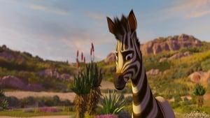 Khumba – Das Zebra ohne Streifen am Popo [2013]