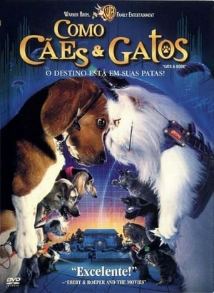 Como Cães e Gatos Torrent, Download, movie, filme, poster