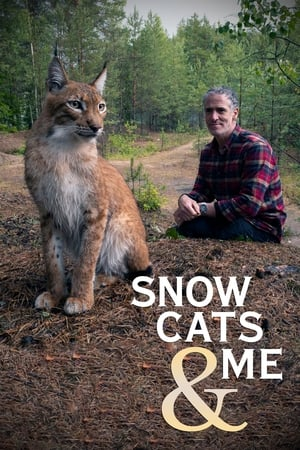 Snow Cats and Me