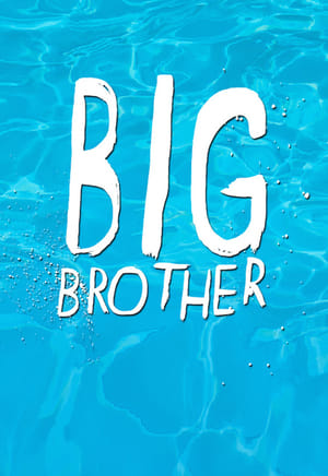 Big Brother 18×38
