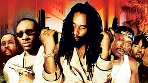 Shottas – Gangster