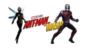 Ant-Man and the Wasp 2018
