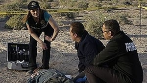 HD series online CSI: Crime Scene Investigation Season 9 Episode 24 All In