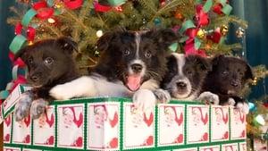 مشاهدة فيلم 12 Dogs of Christmas: Great Puppy Rescue 2012 مترجم أون لاين بجودة عالية