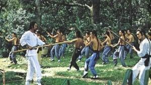 ฤทธิ์แค้นเจ้ากระบองทอง (The Kung Fu Instructor)