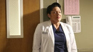 Grey's Anatomy: 11 Temporada x Episódio 5