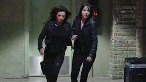 Os Agentes S.H.I.E.L.D. 2×12