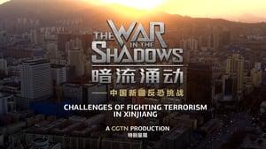 暗流涌动——中国新疆反恐挑战 (2021)