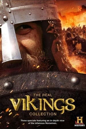 The Real Vikings (2013)