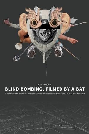 Blind Bombing, Filmed by a Bat