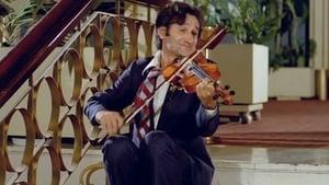 Αν Ήταν το Βιολί Πουλί…