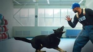 Psi terapeuta w akcji online