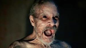 Gece Gelen – It Comes at Night 2017 izle
