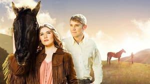 Wild Hearts (2006)