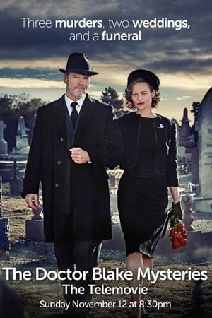 The Doctor Blake Mysteries: Family Portrait (2017)