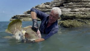 River Monsters Season 8 Episode 2