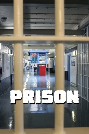 Image Prison