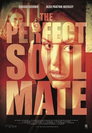 The Perfect Soulmate (2017)